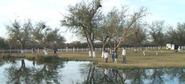 En la madrid se combinan el aire libre y las aguas - Banos termales madrid ...
