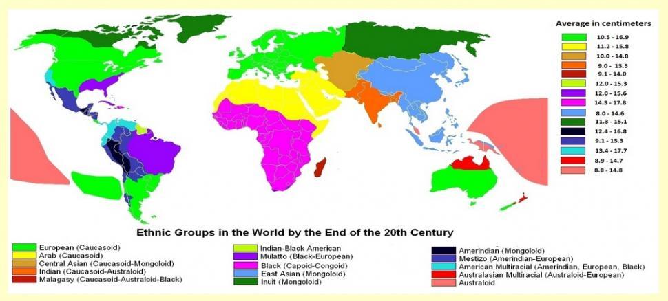 tamaño medio pene paises