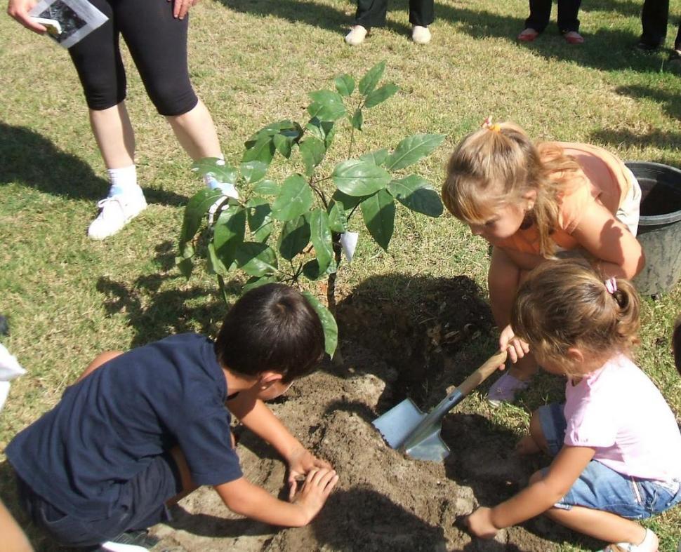 Hacer ecolog a en el patio de la escuela la gaceta tucum n - Cojines gigantes para el suelo ...