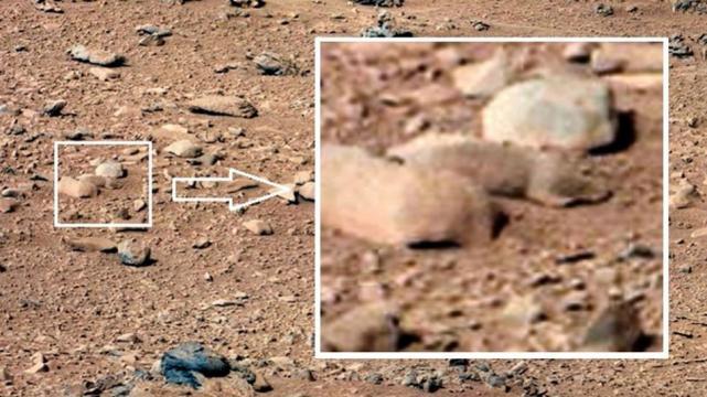 """¿El Curiosity halla una """"rata"""" en Marte?"""