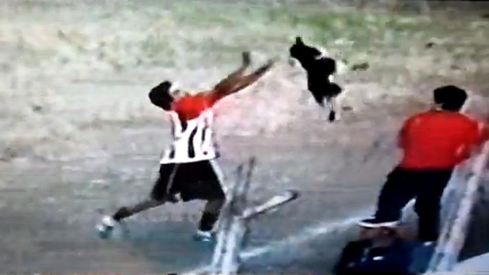An Argentine footballer mistreated a pitch invading dog, got sent off for horrific behaviour
