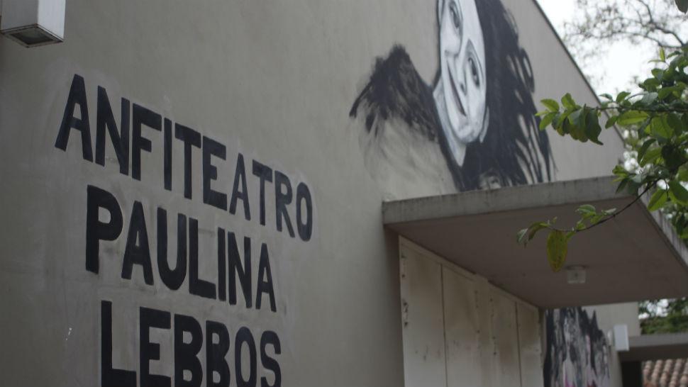 Pintaron un mural de paulina lebbos en la facultad de for Club joven mural