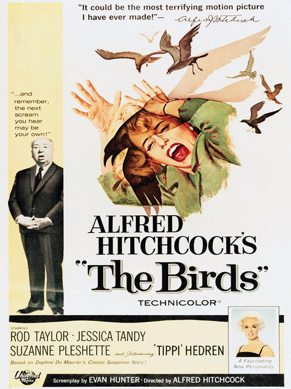 Los pájaros (Alfred Hitchcock's The Birds)