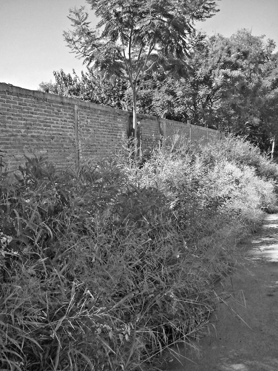 El sector de jard n del cementerio del norte se convirti for Cementerio jardin del mar