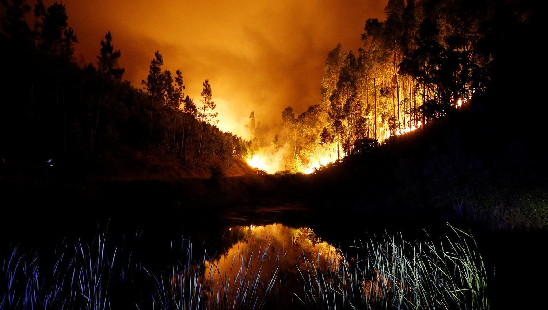 Incendio forestal en Portugal: cifra de muertos aumenta a 62