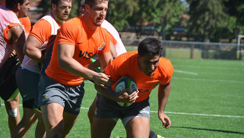 Rugby: Los Pumas tienen plantel para los encuentros ante Gales y Escocia