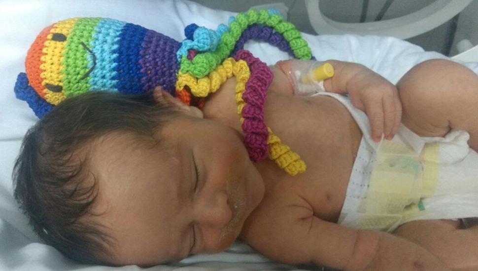 PULPITOS. Los muñecos se entregan en las neonatologías para ayudar a recuperarse a los bebés. GENTILEZA DE LA ASOCIACIÓN.-