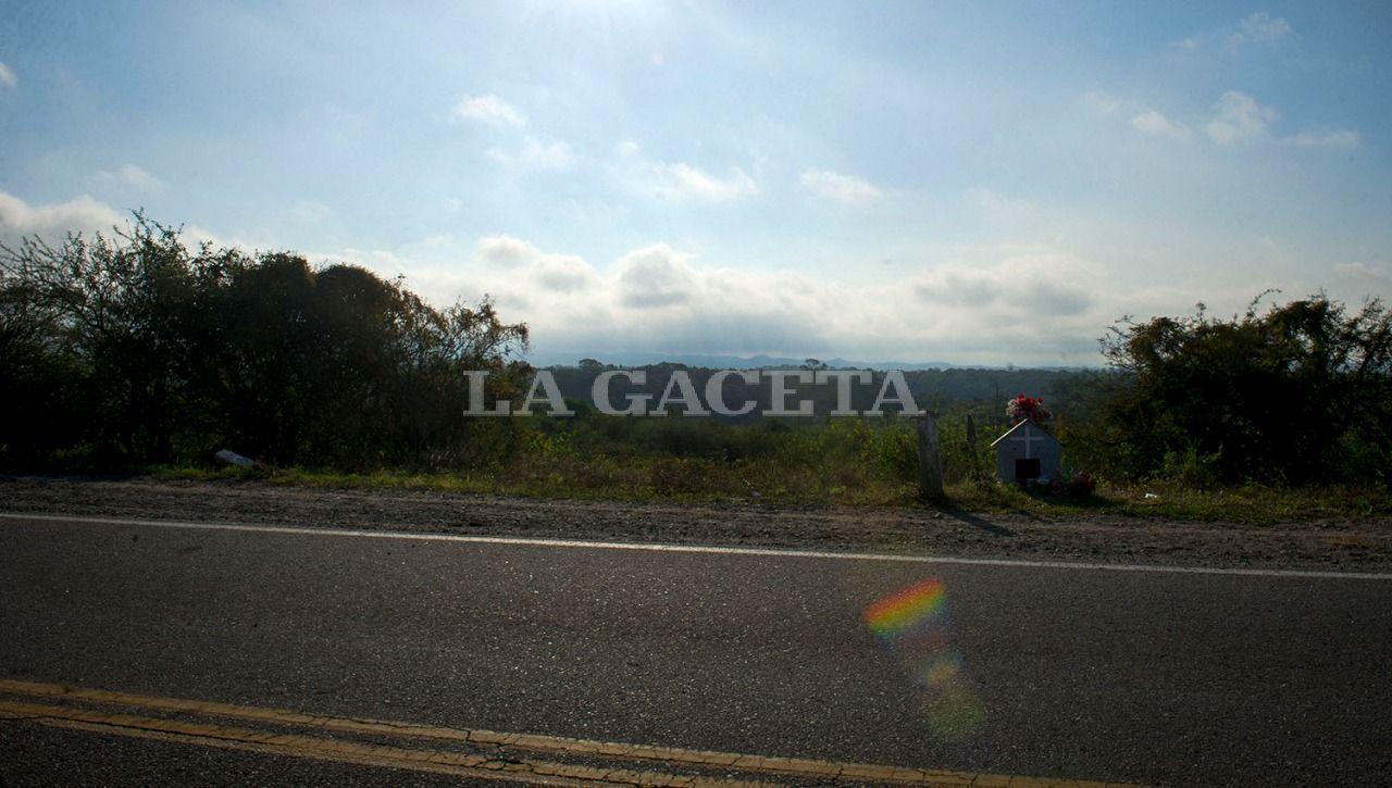Tapia. Ruta provincial  n° 341 km 2,8. LA GACETA / FOTO DE JORGE OLMOS SGROSSO