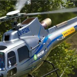 El lugar donde cayó el helicóptero del empresario Brito