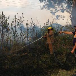 Impactantes imágenes de los incendios en distintos puntos de la provincia