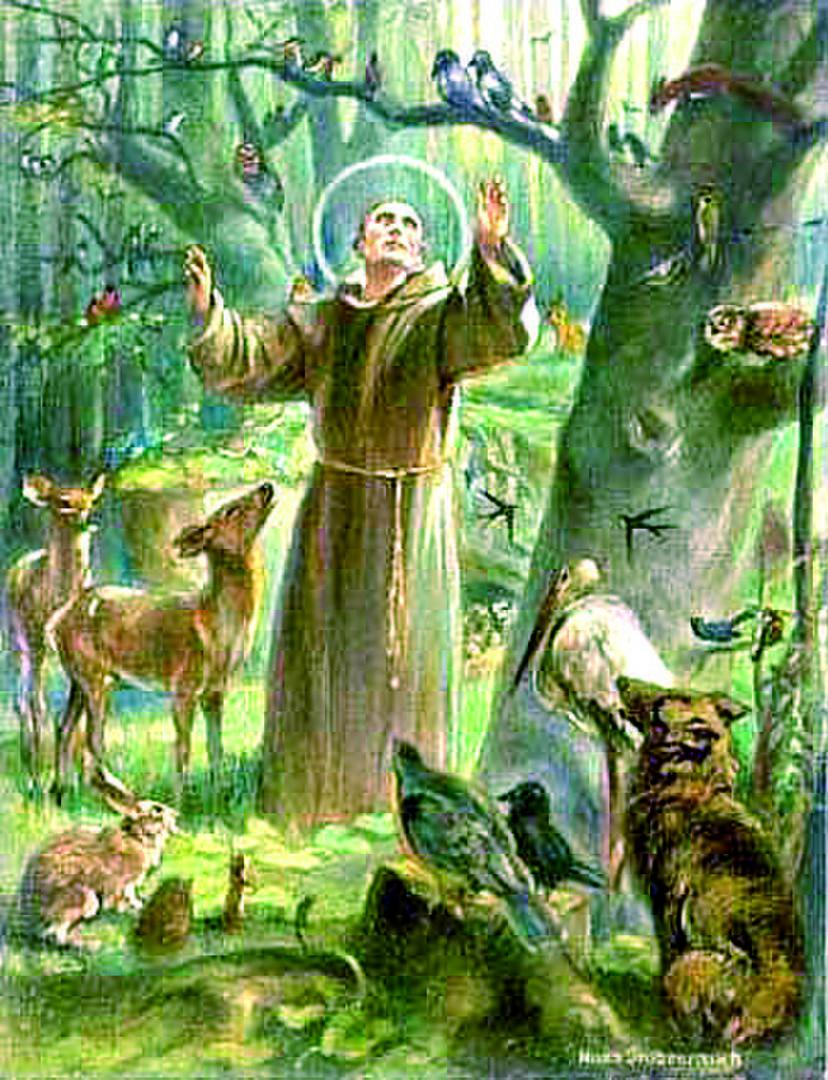Citaten Franciscus Van Assisi : Misa y bendición de las mascotas en nombre san