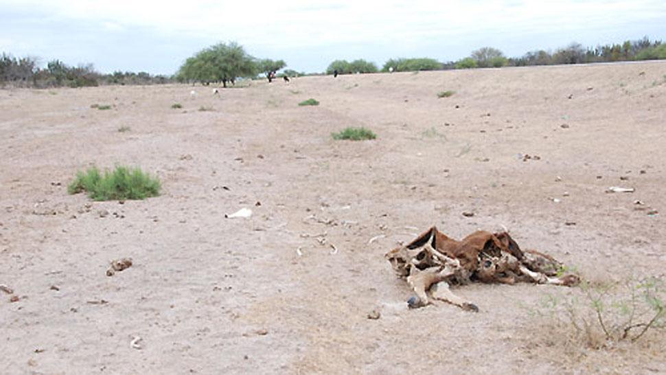 Resultado de imagen para Enorme sequía