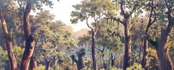 Miguel Cané en la selva tucumana