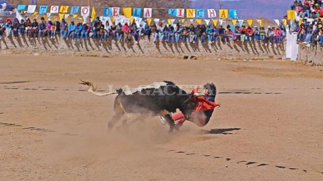 Uno de los toreros es embestido por el toro mientras intentaba quitarle la  vincha que el animal lleva en sus cuernos. LA GACETA   FOTOS DE ÁLVARO  MEDINA ... 3eaa3300394