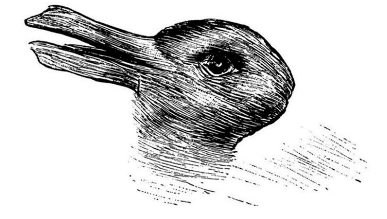 ¿Ves un conejo o un pato?: el enigma que se volvió viral y cuál es su significado