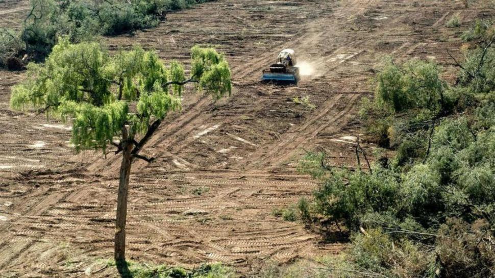 La Nación dice que Tucumán no rinde los fondos para conservar bosques nativos