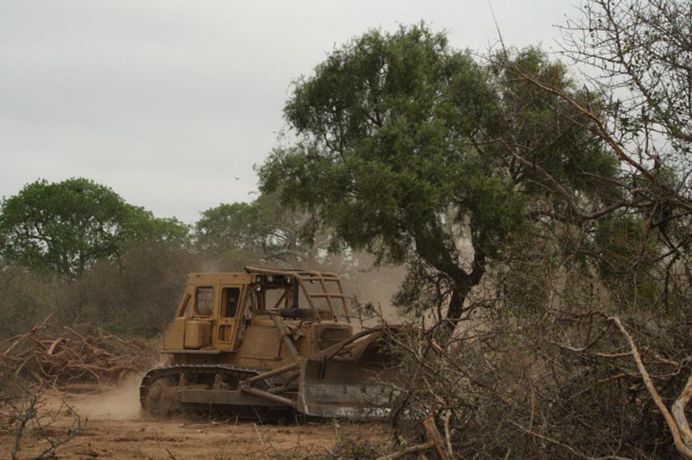 Ligan la tala y la desidia estatal con las últimas inundaciones