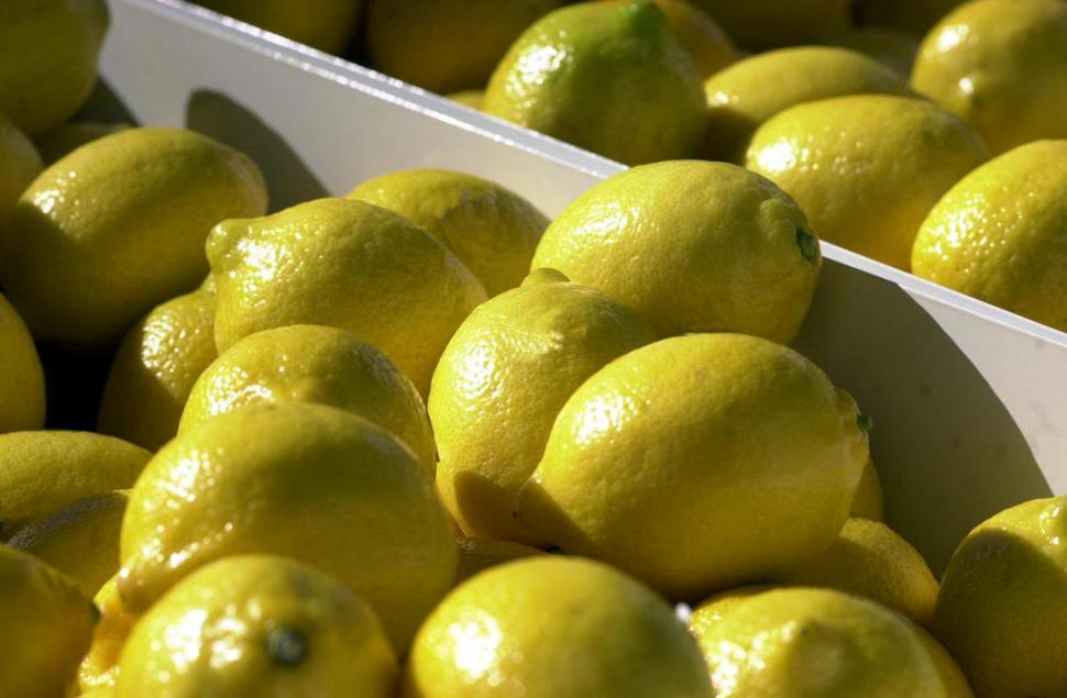 EEUU ya permite la exportación de limones