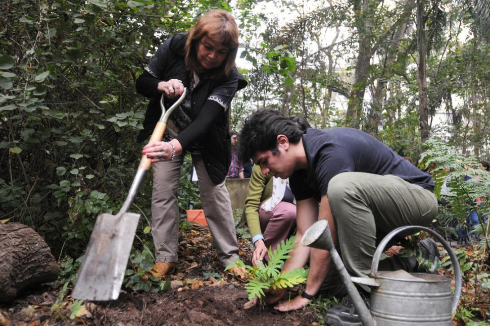 - -ORGULLO TUCUMANO. El Jardín Botánico del Lillo invita a disfrutarlo.-  LA GACETA / FOTOS DE ANALÍA JARAMILLO.-