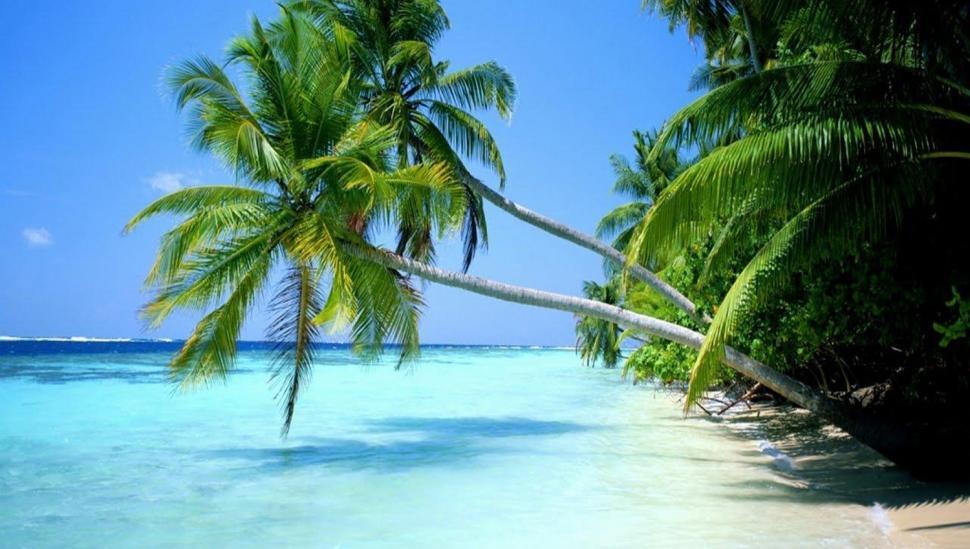 Île aux Nattes, Madagascar