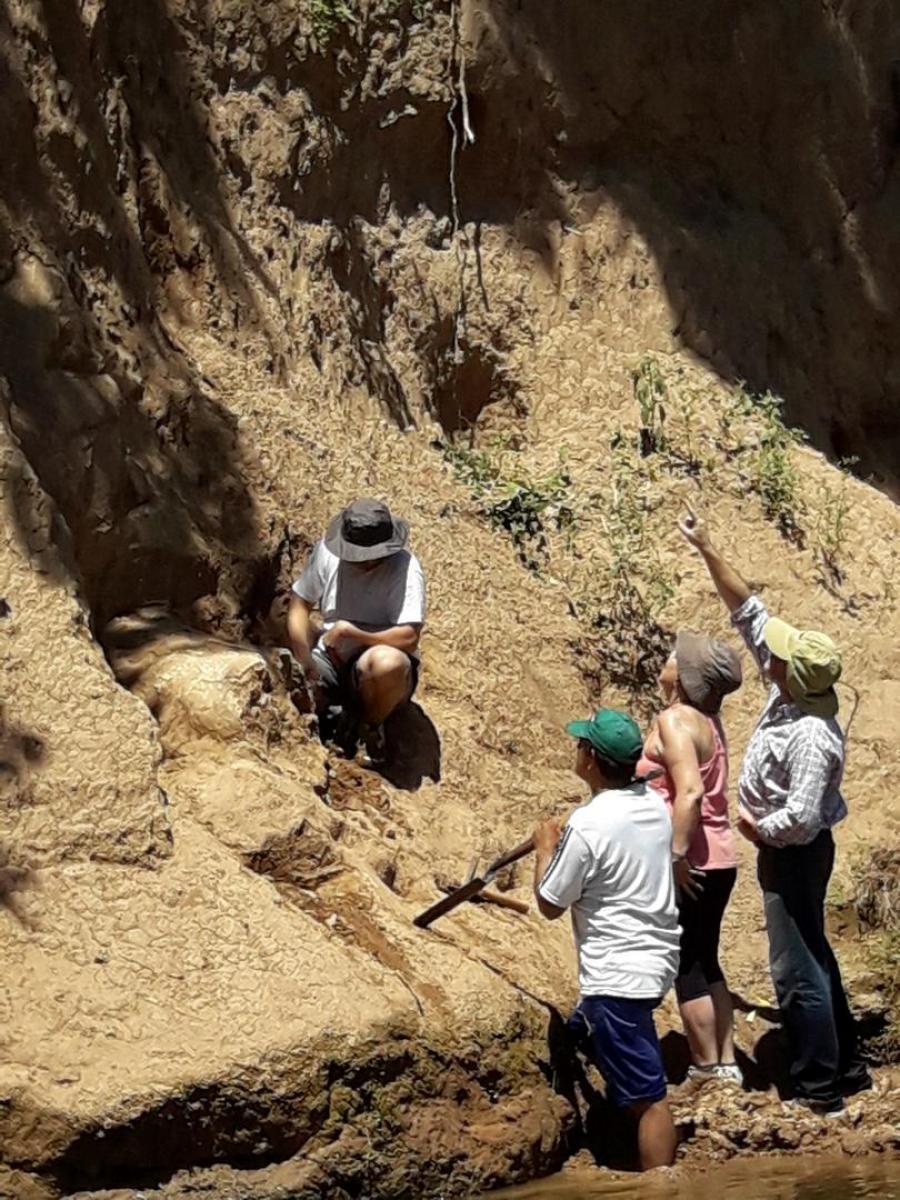 Gliptodonte descubierto en Famaillá. ARCHIVO