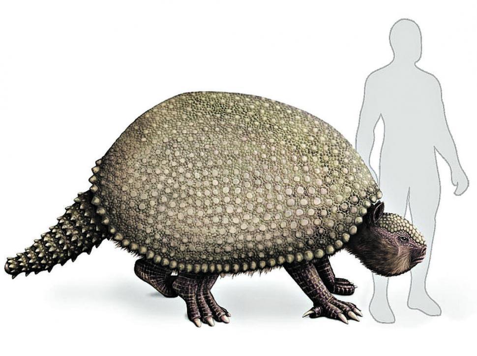 Insólito: estaban pescando y descubrieron restos fósiles de hace más de 10.000 años