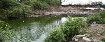 Vecinos de Los Vázquez denuncian que una laguna con desechos les provoca lesiones en la piel