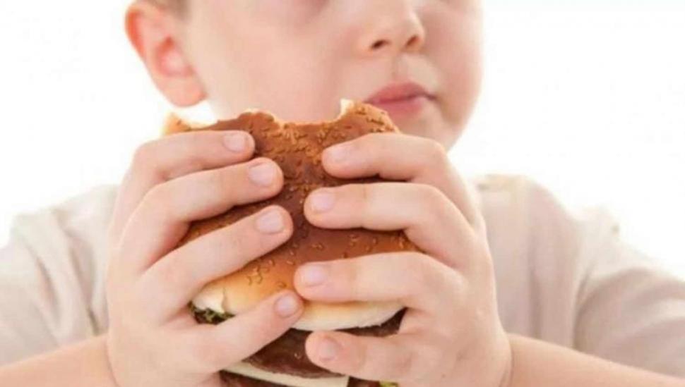 Obesidad infantil: las cifras van en aumento en la provincia y no hay prevención  tucumanos