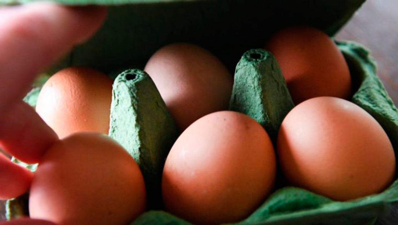 Por qu subi tanto el precio de la bandeja de huevos for Huevo en el ano
