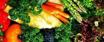 Se puede vivir sin comer alimentos de origen animal y estar saludable