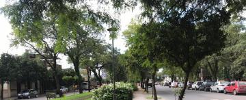 Sacá la bici: las cinco paradas obligatorias de barrio Sur