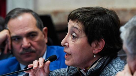El PJ en el Senado negocia para volver a incorporar a Alperovich y Mirkin
