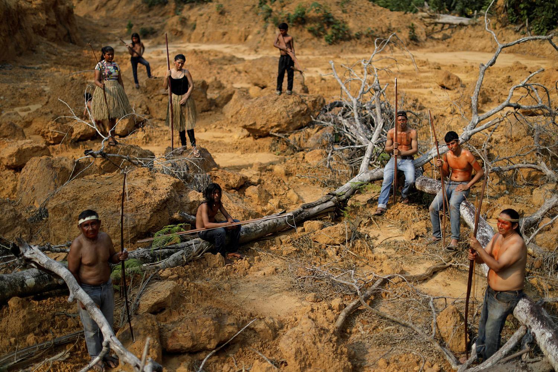 De seguir por este camino, la Amazonía podría convertirse en una sabana, advierte la ciencia