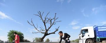 Día de la Limpieza: unos 3.000 voluntarios colaborarán en 76 puntos de la provincia