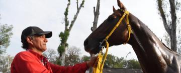 """""""El caballo es un amigo, con el cual te desahogás"""""""