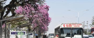 La Provincia subió por tercera vez en el año la tarifa en las líneas interurbanas y rurales