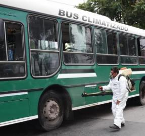 Dengue: los mosquitos no vuelan muy lejos, pero viajan con las personas y se hacen fuertes