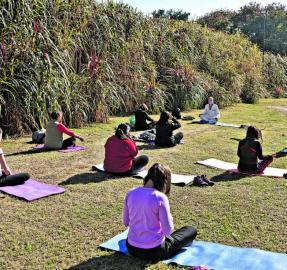 Podcast: aprender a meditar para controlar la cabeza