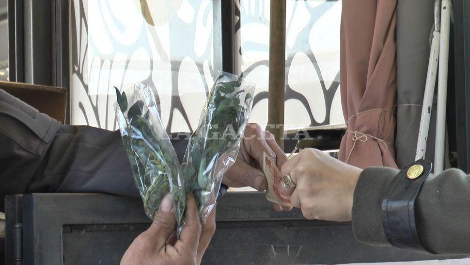 Caña con ruda contra el coronavirus — Corrientes