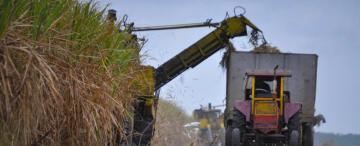 Tucumán: el azúcar y el sector público atenuaron la caída económica de 2020
