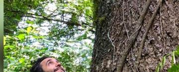 Qué es Pachama, la idea de un tucumano para salvar el mundo