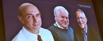 Premio de Medicina: los cazadores del virus de la hepatitis C se llevan el Nobel