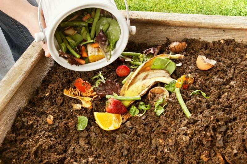 Feriado en casa: aprovechá la basura del fin de semana y armá tu compost