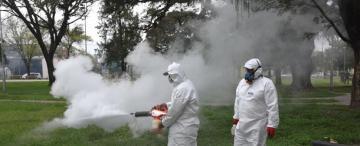 El cambio climático puede alterar la forma en que aparece el dengue en nuestra provincia