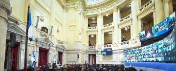 El Colegio de Abogados de la Capital considera inconstitucional el proyecto de aborto legal