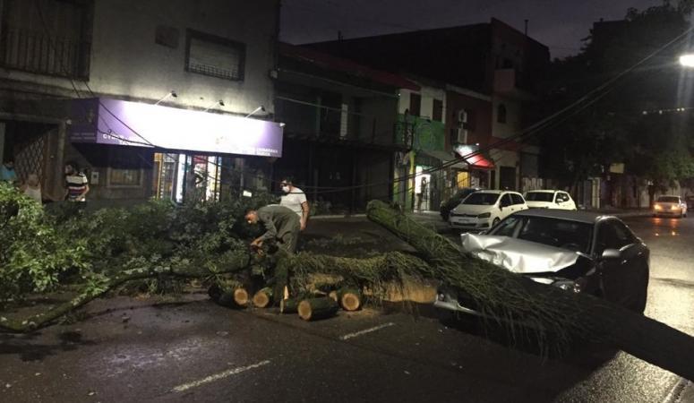 Una mujer chocó contra un árbol caído en Jujuy al 100