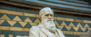 Evolución, pandemia y política en Darwin