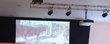 En el remate televisado, no quedó vaca por vender
