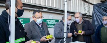 El primer cargamento de limones sale hacia Países Bajos