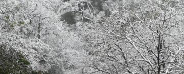 La nieve hizo una fiesta en Tafí del Valle